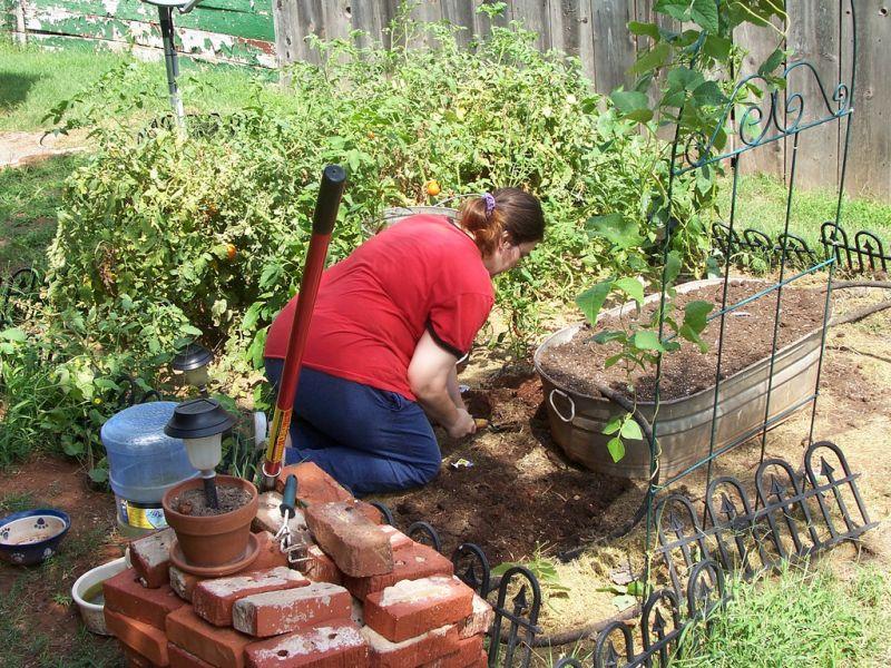 Creating a miniature vegetable garden.